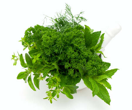 mortar with fresh herbs isolated on white background Stock Photo - 16241731