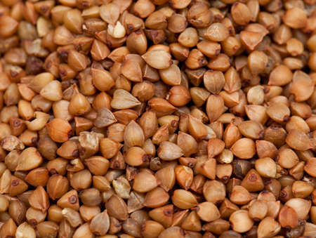 kasha: buckwheat background