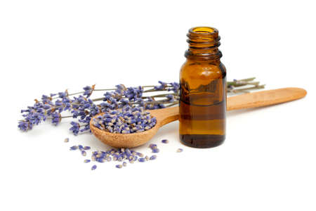 lavender flowers: Dried lavender with a bottle of essential oil over white