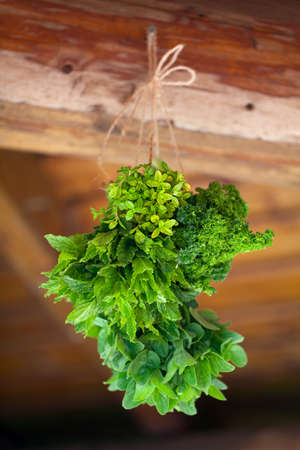 hanging fresh herbs photo