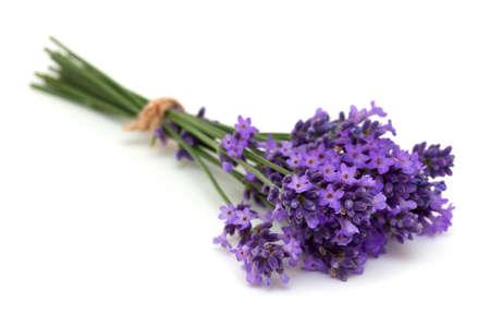 tied lavender flowers