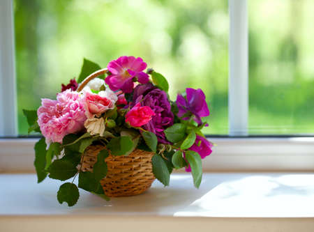 many windows: colorful roses in a basket on window-sill