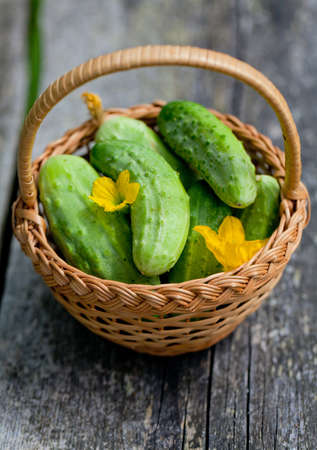 fresh cucumbers in a basket on wooden table photo