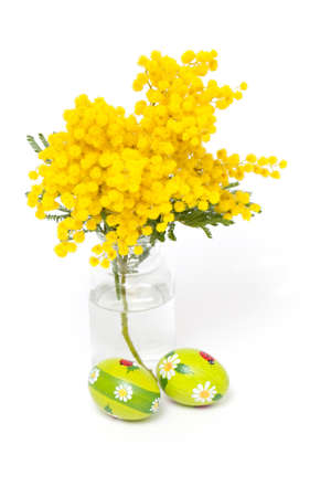 mimosa flower and Easter eggs Stock Photo - 18378515