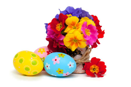 decorration: primala flowers and easter eggs isolated on white background Stock Photo