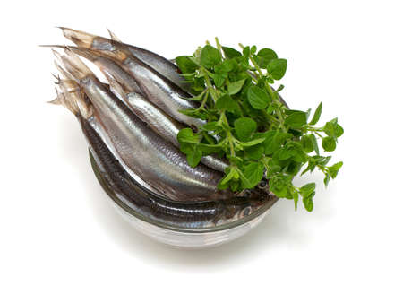 sprat: sprat fish in a glass bowl isolated on white background Stock Photo