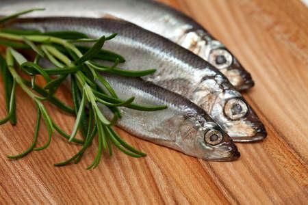 sprat: sprat fish and rosemary on wooden table