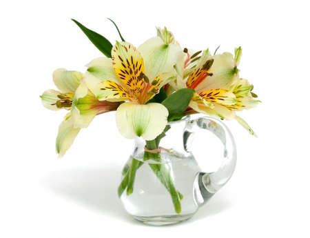 alstroemeria flowers in a glass pitcher photo