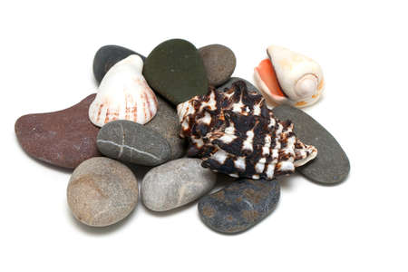 pebles: pile of pebles and sea shells isolated on white background Stock Photo