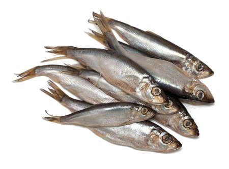 sprat: sprat fish isolated on white background