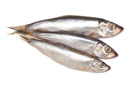 sprat fish isolated on white background Stock Photo - 19396893