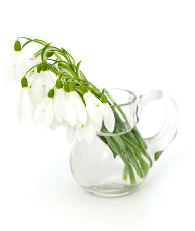 bouquet of snowdrops in a glass pitcher photo