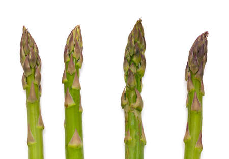 nutritiously: asparagus isolated on white background