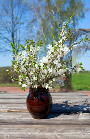 spring blossoms in a clay vase  photo