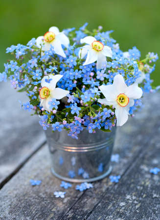 forget-me-not and narcissus flowers on wooden garden table photo