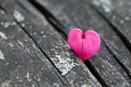hemorragias: flores en forma de coraz�n en superficie de madera