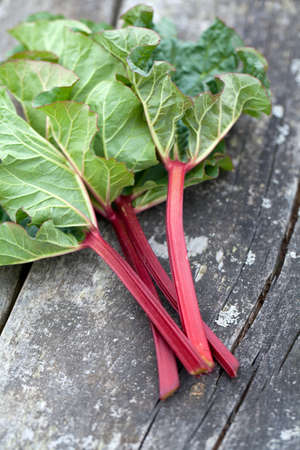 rhubarb on wooden surface photo