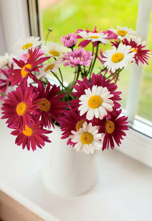 daisies on windowsill Stock Photo - 20200169