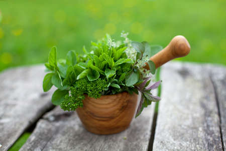 fresh herbs in a wooden mortar on wooden table photo
