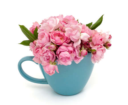 blue cup full of small pink roses over white photo