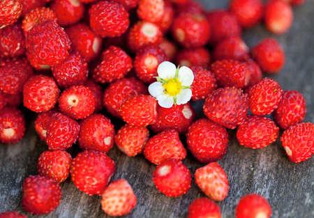 wild strawberries on wooden surface photo