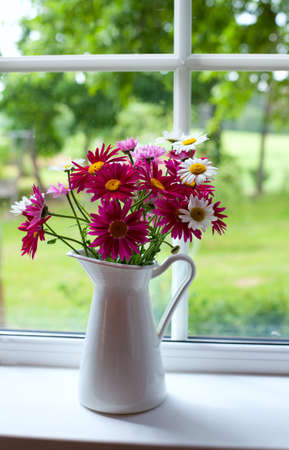daisies on windowsill Stock Photo - 20785152