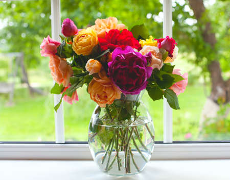 rose window: large vase with colorful roses on window sill