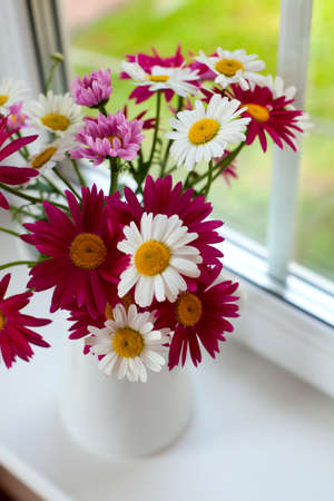 colorful daisies on window sill photo