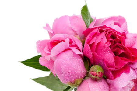 bouquet of roses and peonies photo