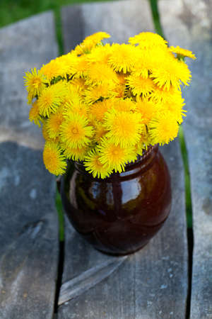 dandelions on wooden garden table photo
