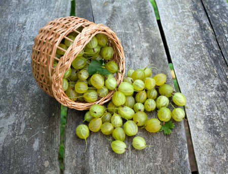 gooseberry in a basket on wooden background photo