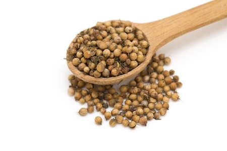 coriander seeds isolated on white background Stock Photo - 21286630