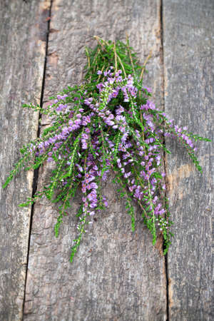heather on wooden surface photo
