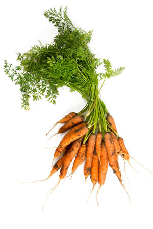 group of plants: heap of freshly picked carrots isolated on white