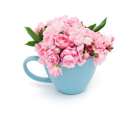 blue cup full of small pink roses over white Stock Photo - 22396175