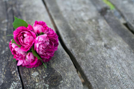 roses in vase: bunch of violet striped roses on wooden surface