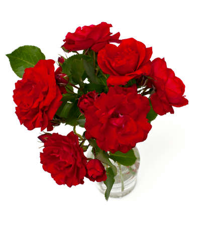 red roses in a glass vase isolated on white photo