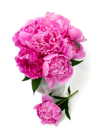 bunch of peonies in vase isolated on white background photo