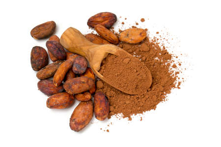 cocoa powder in a scoop and cocoa beans isolated on white photo
