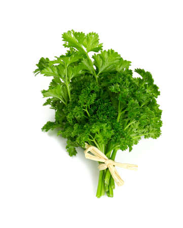 raw food: tied fresh parsley isolated on white