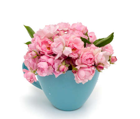 dotted background: blue cup full of small pink roses over white