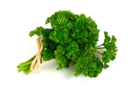 tied fresh parsley isolated on white photo