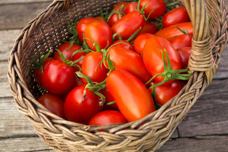 basket with fresh tomatoes photo