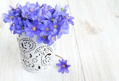 flower vase: hepatica nobilis flowers on wooden surface Stock Photo