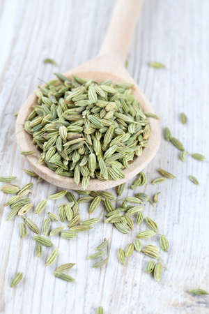 fennel seed in a wooden spoon on table photo