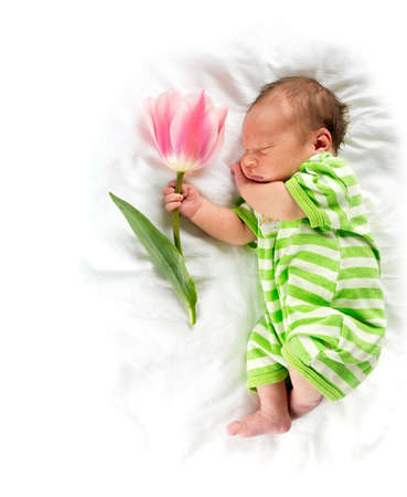 sleeping newborn holding tulip photo