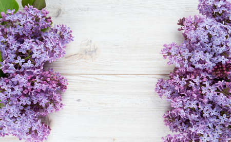 beautiful lilac on white wooden surface photo