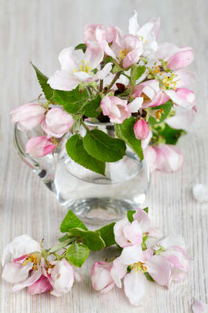 apple blossoms in a glass pitcher photo