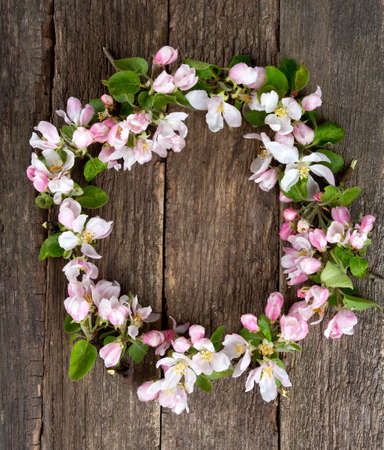 apple blossoms on wooden surface photo