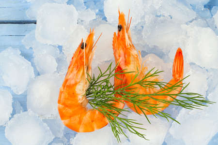 cooked shrimps on ice